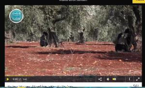 Harditnin Raitan Al Kaida FSA-Front