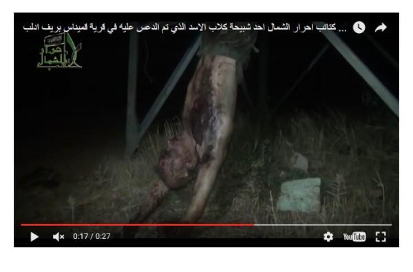 aufgehangt-totgefoltert